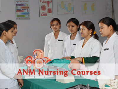 A.N.M. Multipurpose Health Worker